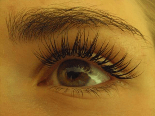 express-lashes